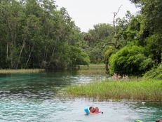 Rainbow Springs State Park, belle source de Floride