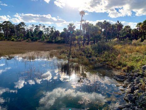 Okeeheelee Park de West Palm Beach