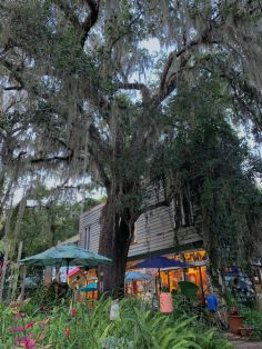 Micanopy en Floride