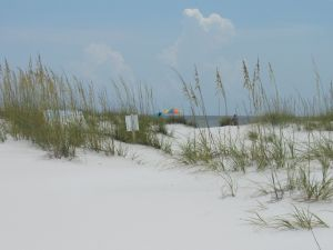 Shell Island à Panama City Beach