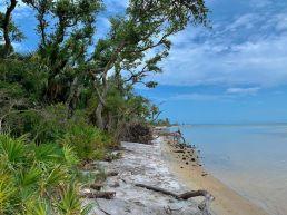 Le magnifique sentier de randonnée maritime, côté baie, à l'entrée du St Joseph Peninsula State Park