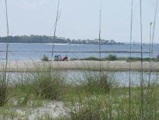 bald-point-state-park-st-mark-national-park-plage-panhandle-Floride-5072
