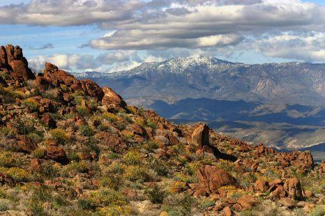 Anza-Borrego Desert State Park.