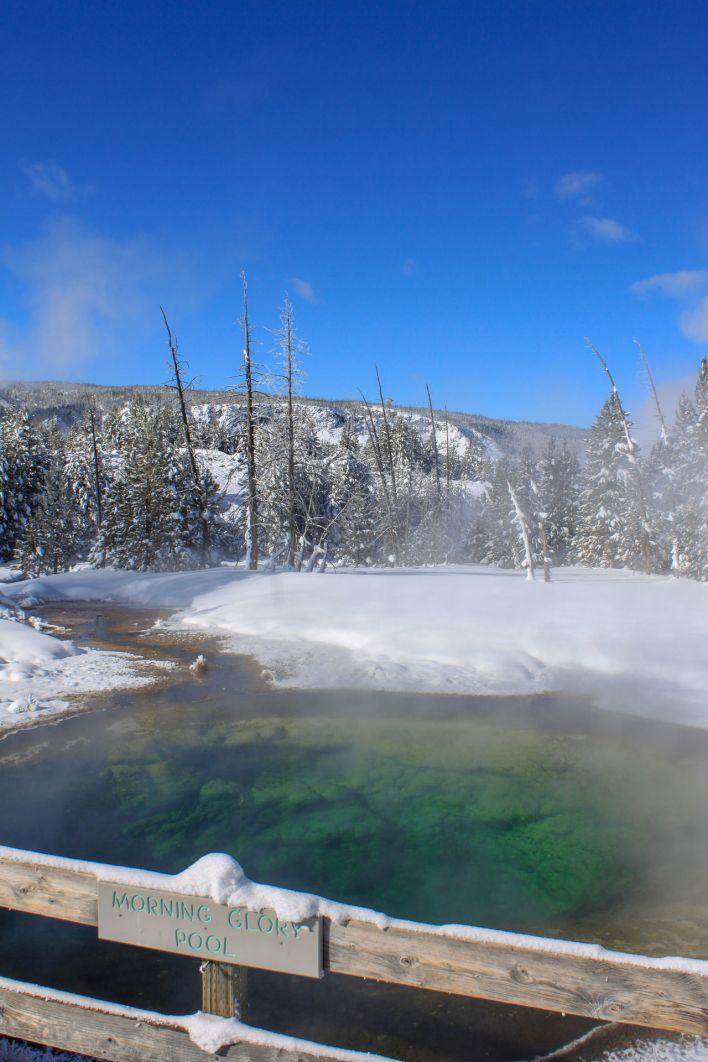 La Morning Glory Pool de Yellowstone.