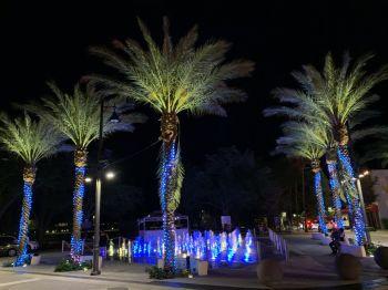 clematis-street-west-palm-beach-6517