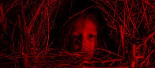 A Classic Horror Story (film)