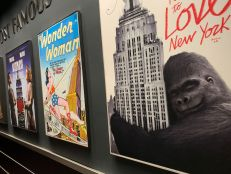 Visite de l'Empire State Building à New-York