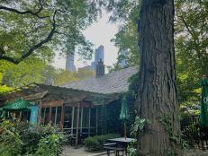 Zoo de Central Park
