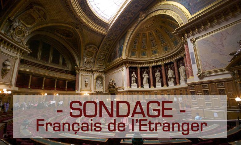 Sondage : les Français de l'étranger sont-ils efficacement représentés par leur député et sénateurs