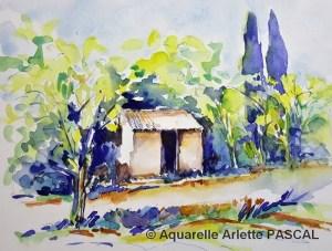 Arlette PASCAL Petit cabanon (Visioateliers)