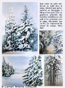 Arlette CHALON Randonnée hivernale (Visioateliers)