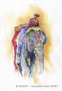 Eléphant à Jaipur - Alain MARC -