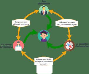 diagramme d'organisation du soutien scolaire à toulouse