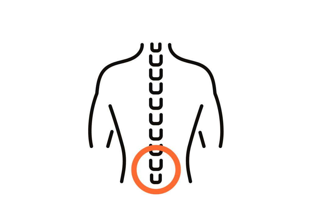 stretchingpro-programme-hercule-etirements-musculation-flexibilite-souplesse-mobilite-decompression-vertebres-lombaires-dos-colonne-vertebrale