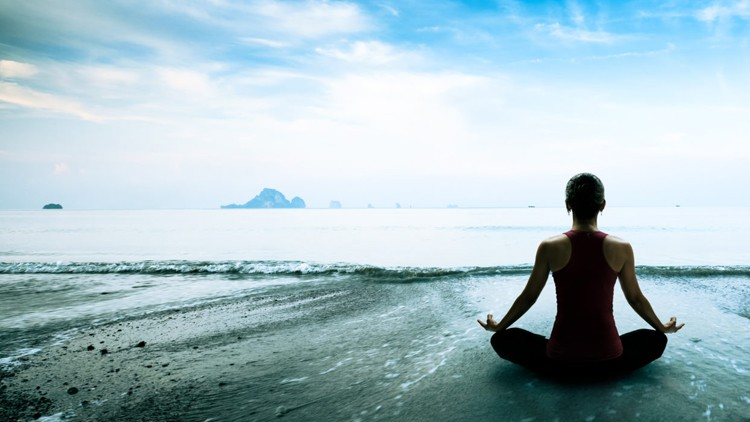 Principles and Practice of Mindfulness Leadership