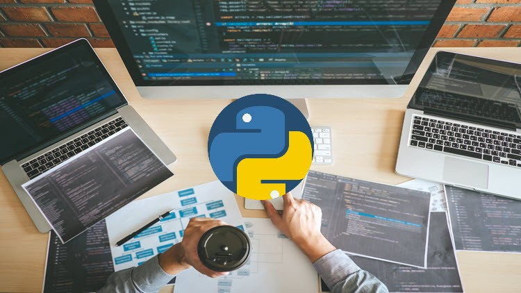 Python Programming for Beginners Hands On Online Lab