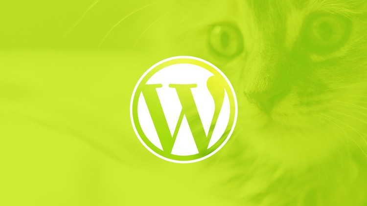 WordPress for Beginners Create a Website Step by Step