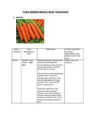 Cara Berkembang Biak Wortel : berkembang, wortel, 310740256-Cara-Berkembang-Biak-Tanaman.docx, BERKEMBANG, TANAMAN, WORTEL, Wortel, Vegetatif, Alami, Dengan, Course