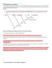 Cladogram Practice Worksheet : cladogram, practice, worksheet, Cladogram, Worksheet, Homework.doc, CONSTRUCTING, CLADOGRAM, Think, Evolutionary, Family, Which, Things, Course