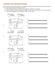 Diffusion And Osmosis Problems Answer Key : diffusion, osmosis, problems, answer, Osmosis, Worksheet.pdf, Following, Determine, Concentration, Solute, Solvent, Solution, Outside, Course