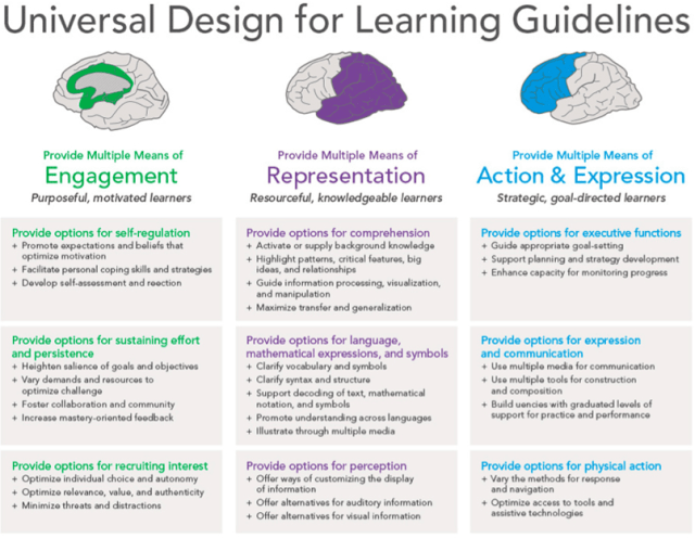 Updated UDL Guidelines