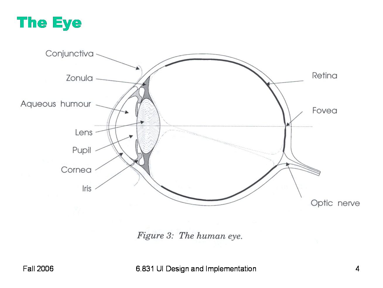 hight resolution of eye diagram quiz game