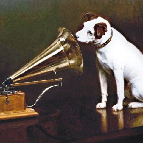 Dog listening to a gramophone