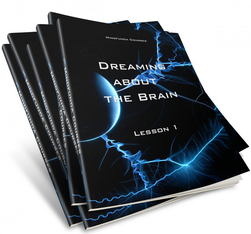 Dreaming about the Brain