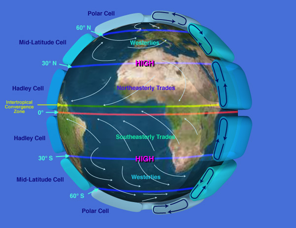 rainforest structure diagram real number system overview, solar energy, pressure, & wind belts | earth 540: essentials of oceanography for educators