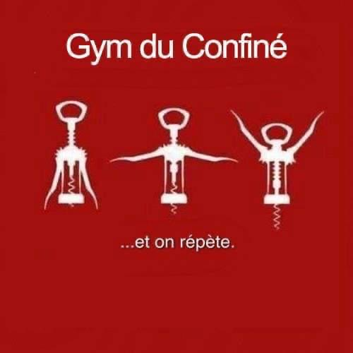 Gym du confiné !