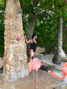 Flamingo Beach _Courtesy of Court22