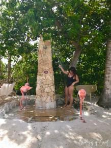 Flamingo Beach _Courtesy of Court53