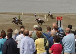 Watching the prospects at the Courtmacsherry Strand Races. Photo: Martin Walsh.