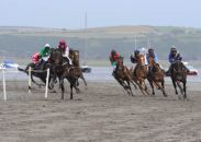 Runners and riders in the 2009 Lislee Derby, the feature race of the Courtmacsherry Strand Races. Picture: Martin Walsh.