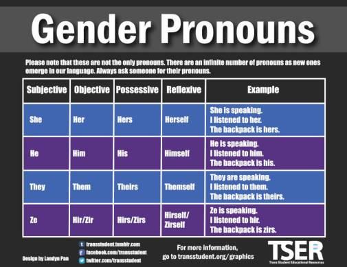 gender pronouns chart from TSER