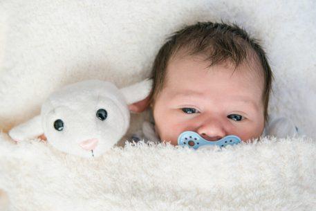 Adelyn had a little lamb in Regina