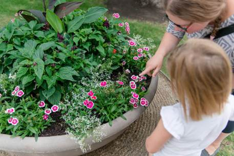 Regina Family Photographer - Government House - Flower Gardens