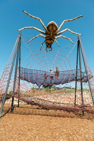 Inside of Charlottes Web