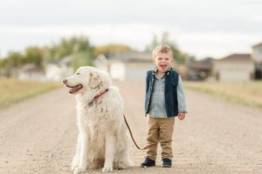 Little boy in his khaki pants and blue vest walking his dog