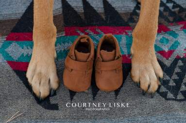 Brown baby shoes with dog paws on blanket