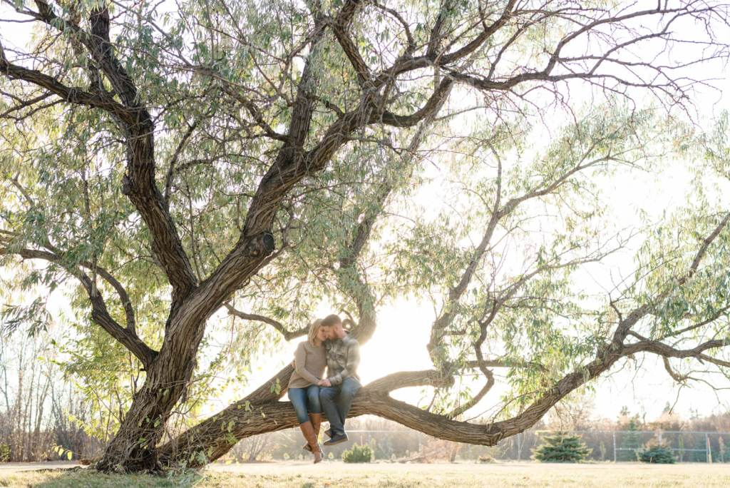 Regina Engagement Photographer - Andy-Laura - Sitting on a Willow Tree