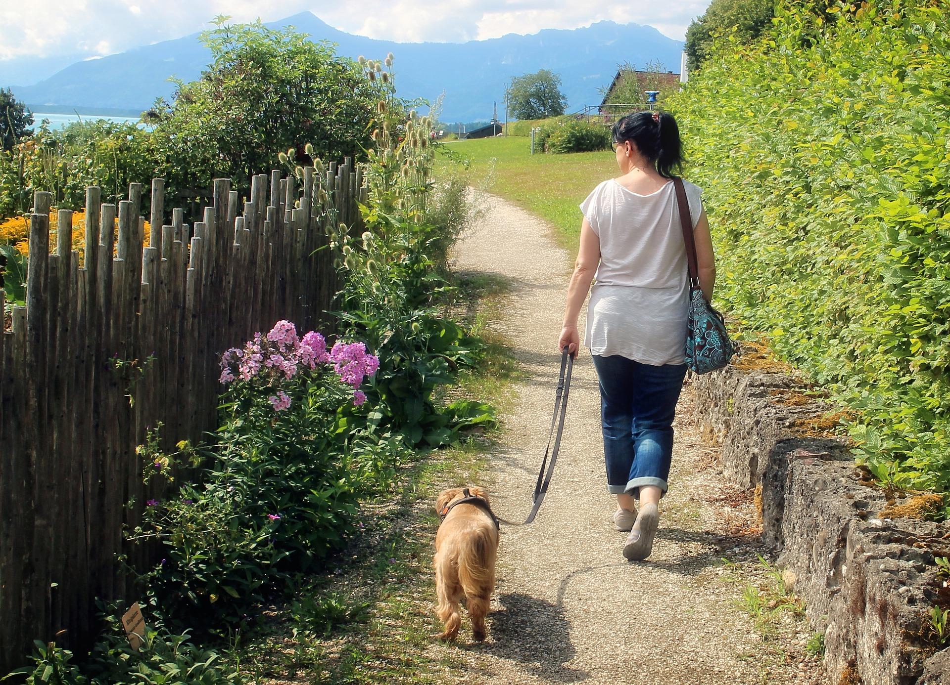 Pets Boost Health