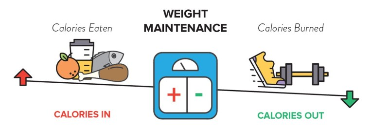 Weight maintenance depends on caloric intake