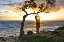 Reasons Visit North Shore Of Oahu