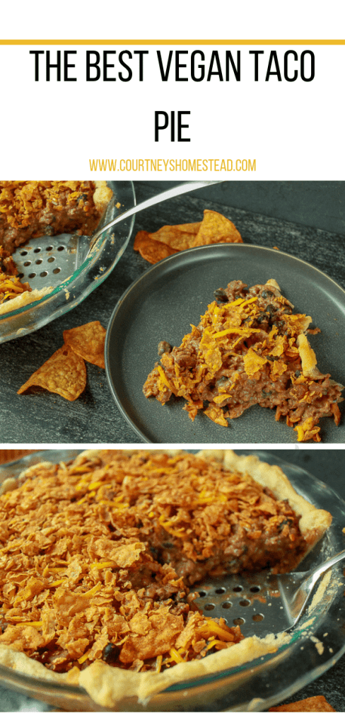 The best EVER Vegan Taco Pie