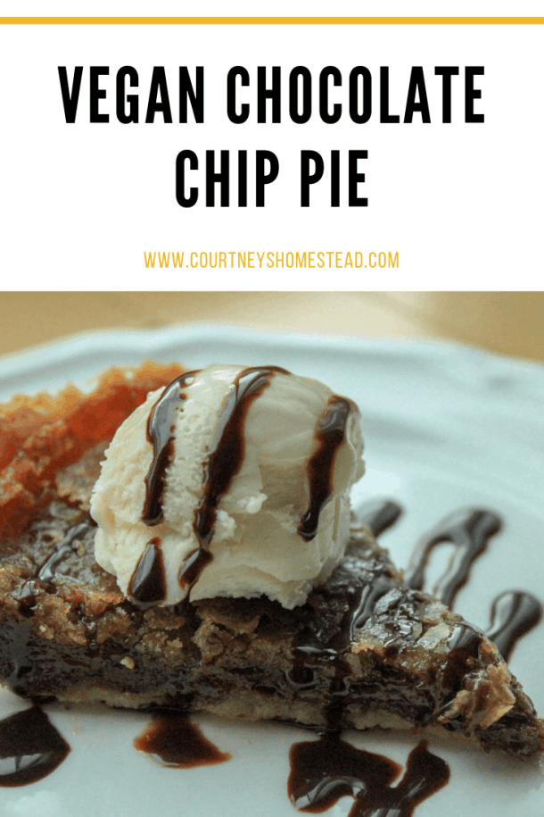 The BEST vegan chocolate chip pie