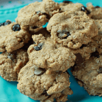 Easy Vegan Breakfast Cookies
