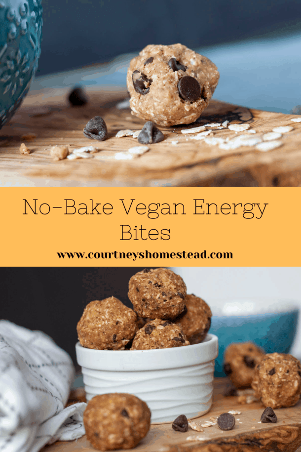 vegan no bake  energy bites