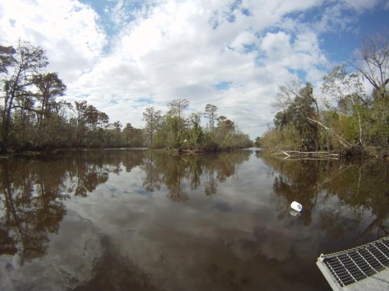 Cajun Pride Swamp Tours. Shot with a GoPro Hero.