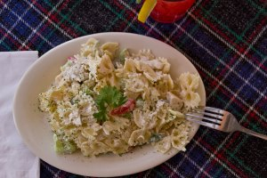 Bowtie Chicken Pasta